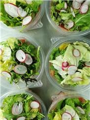 Gemischter Salat:   Gemischter Salat mit Kernöl und Honig- Apfelessig